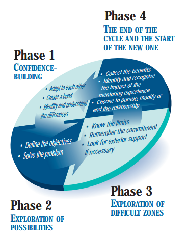 mentor-phases-chart-en.PNG