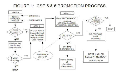 Promotion Scale
