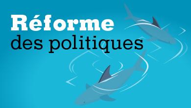 Réforme des politiques