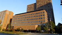 Photograph of the Terrasses de la Chaudière office complex in Gatineau
